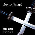 Imari Tones Jesus Wind